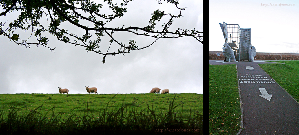 A few illustrations of compositional rules of thumb: (L) The horizon sits about a third of the way up from the picture, the sheep are spaced out well, and the branches fill up the otherwise empty top half; (R) Leading lines guide you to the subject. Also note the horizon is about a third of the way down and nothing is smack in the center.
